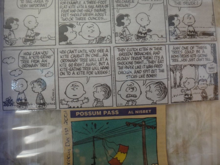 Charlie Brown and the evil kite eating tree