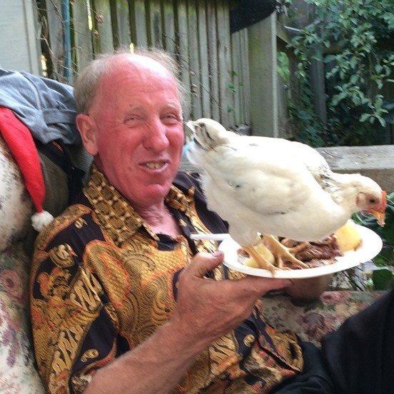 Roaster the demented chicken
